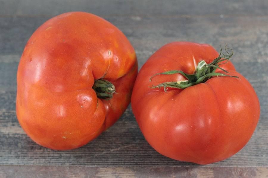 Tomates coeur de boeuf - Le Potager d'Olivier - La Ruche qui dit Oui ! à la maison
