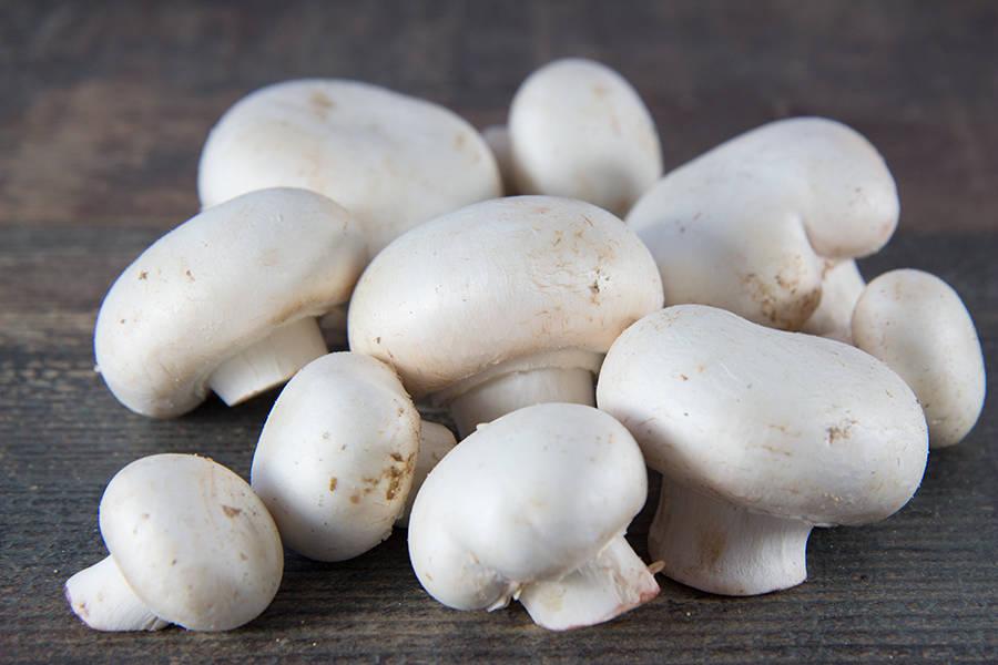 Champignon de Paris blanc - Grande champignonnière de la Croix Madeleine - La Ruche qui dit Oui ! à la maison