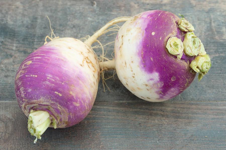 Navets BIO - Les Légumes de Planche - La Ruche qui dit Oui ! à la maison