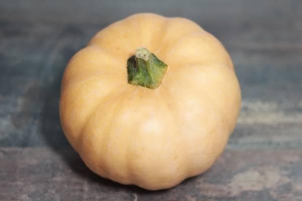 Courge carat - Les Légumes de Laura
