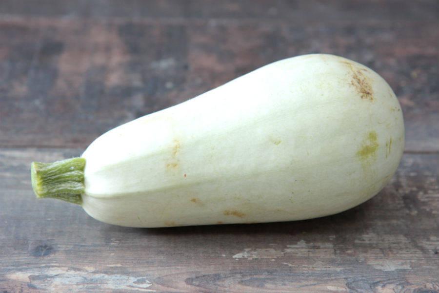 Courgette blanche d'Egypte BIO - Le Clos de Nonville - La Ruche qui dit Oui ! à la maison