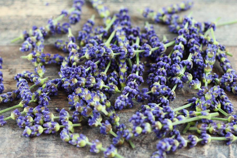 Fleurs de lavande - EARL Chevet - La Ruche qui dit Oui ! à la maison