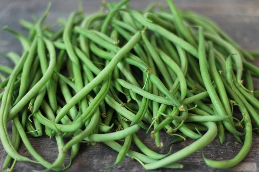 Haricot vert BIO - Les Légumes de Planche - La Ruche qui dit Oui ! à la maison