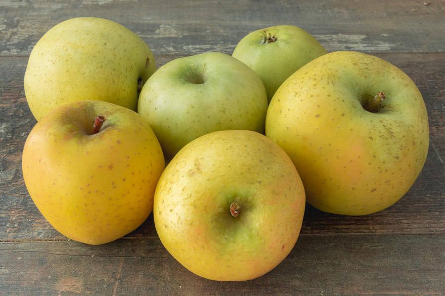 Pomme Chantecler - Vergers de Molien - La Ruche qui dit Oui ! à la maison
