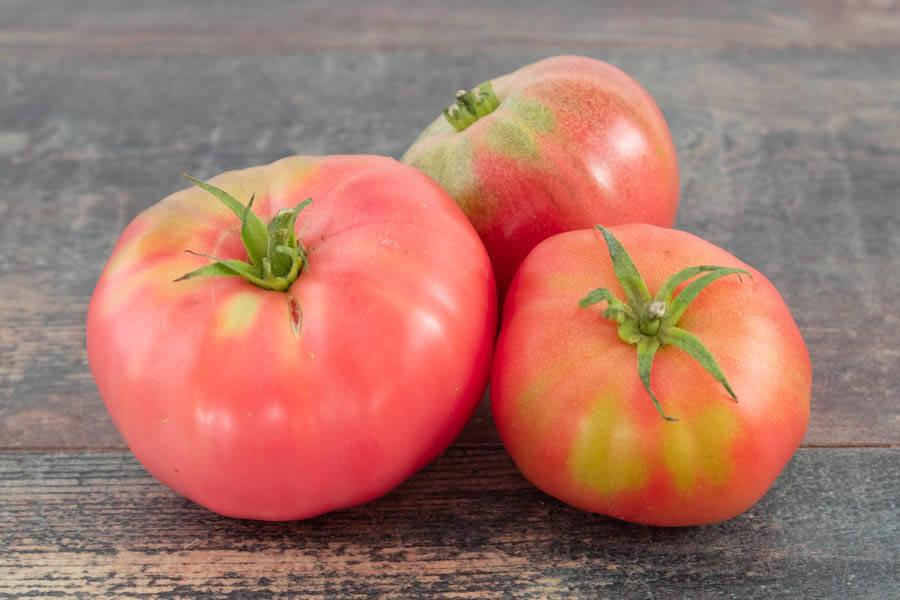 Tomate (en conversion BIO) - Cueillette Varet - La Ruche qui dit Oui ! à la maison