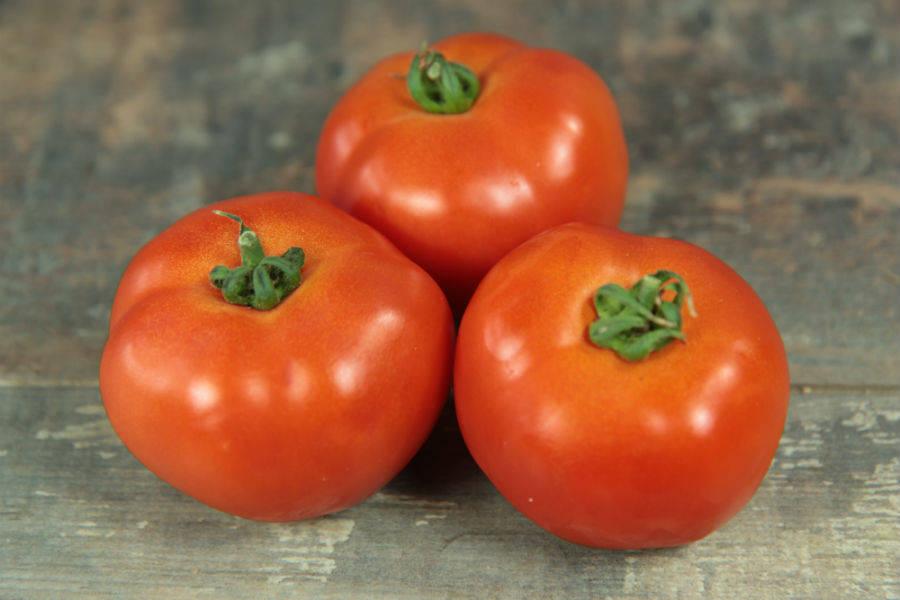 Tomates rouges rondes BIO - Les jardins de Courances - La Ruche qui dit Oui ! à la maison