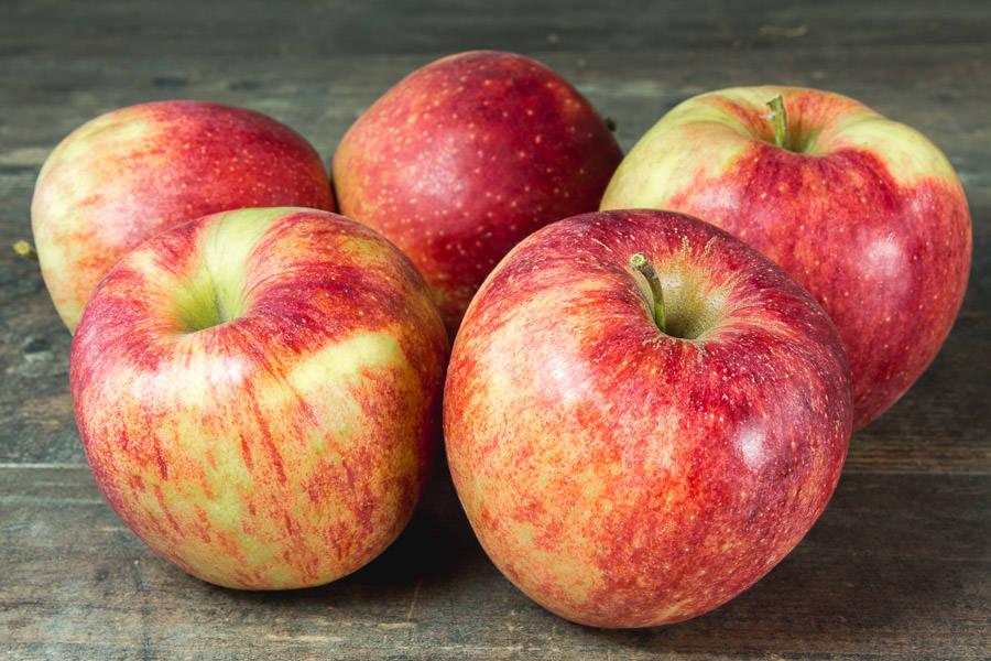 Pommes Jonagored - Cueillette de Nolongue - La Ruche qui dit Oui ! à la maison