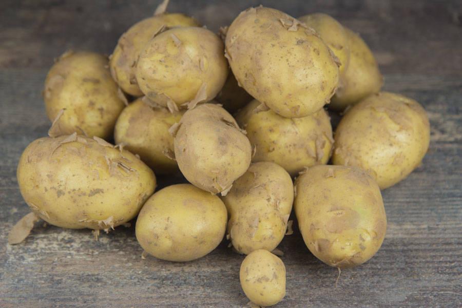 Pomme de terre nouvelle (en conversion BIO) - Cueillette Varet - La Ruche qui dit Oui ! à la maison