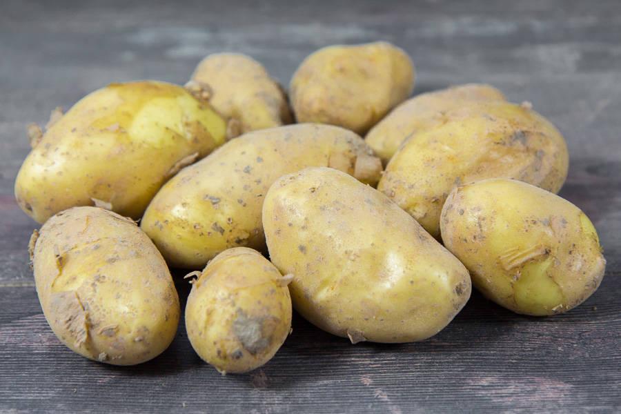 Pomme de terre Annabelle nouvelle - Les Avenages - La Ruche qui dit Oui ! à la maison