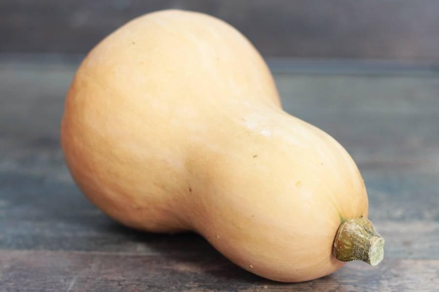 Butternut BIO - Les Légumes de Planche - La Ruche qui dit Oui ! à la maison