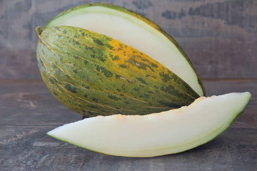 Melon vert Piel de Sapo - Ferme des Bartioles - La Ruche qui dit Oui ! à la maison