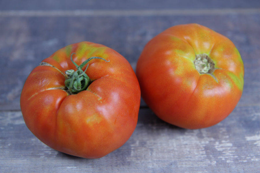 Tomates anciennes (en conversion BIO) - Cueillette Varet - La Ruche qui dit Oui ! à la maison