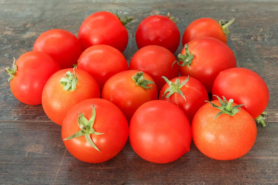Tomates rondes BIO - Les Légumes de Laura - La Ruche qui dit Oui ! à la maison