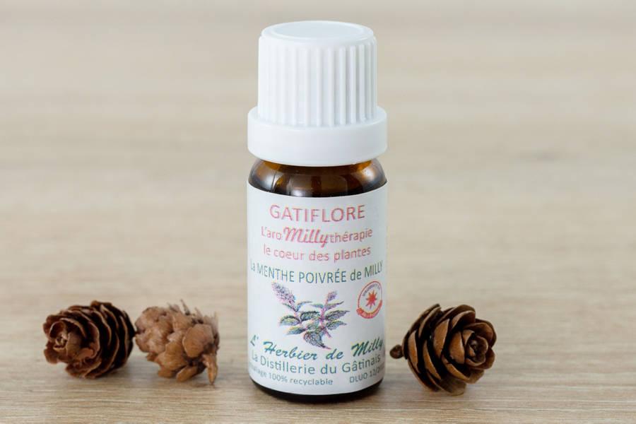 Huile essentielle de menthe poivrée - L'Herbier de Milly - La Ruche qui dit Oui ! à la maison