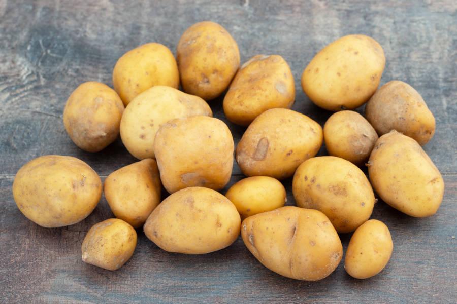 Pomme de Terre grenaille BIO - Les Légumes de Laura - La Ruche qui dit Oui ! à la maison