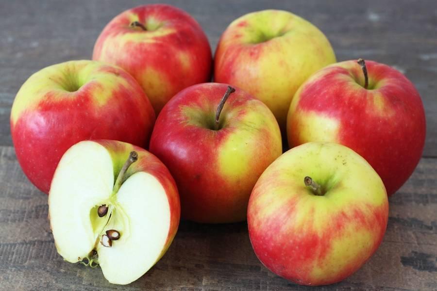 Pomme Pink Rose - Vergers de Pomamour - La Ruche qui dit Oui ! à la maison