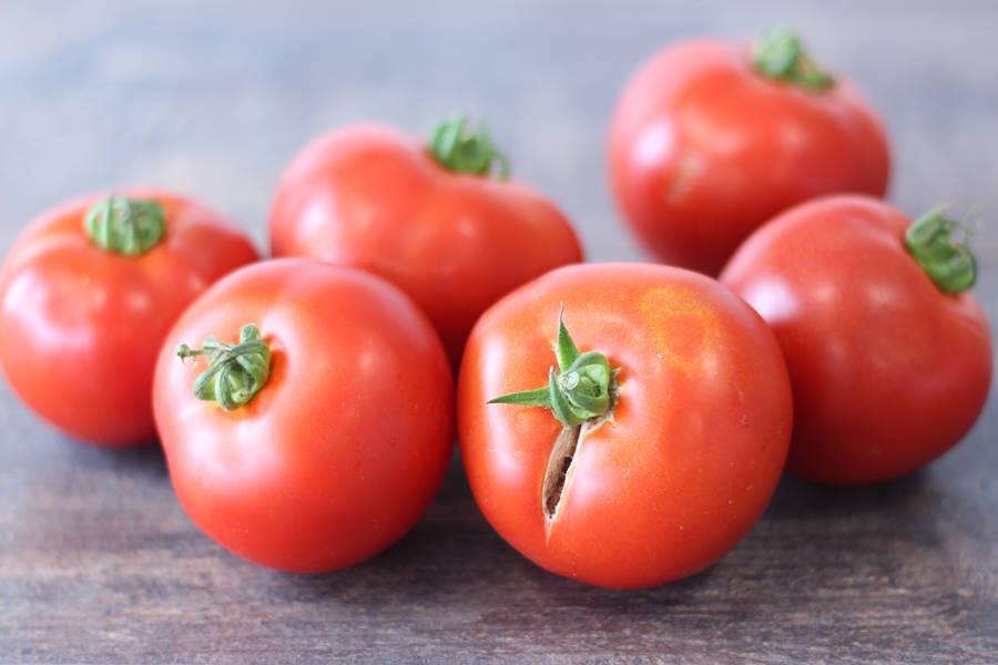 Tomate ronde BIO - Le Potager de la Grenouillère - La Ruche qui dit Oui ! à la maison
