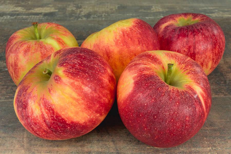 Pomme Elstar - Vergers de Molien - La Ruche qui dit Oui ! à la maison