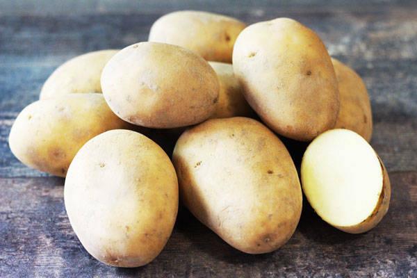 Pomme de terre Agata - Le Potager d'Olivier