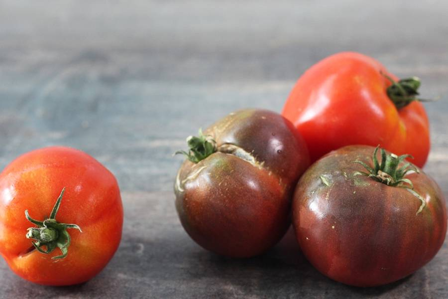 Mélange de tomates anciennes - Agripolis - La Ruche qui dit Oui ! à la maison