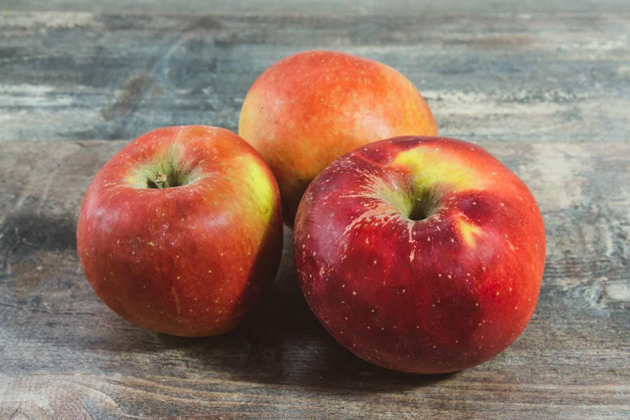 Pomme Melrose - Cueillette de Nolongue - La Ruche qui dit Oui ! à la maison