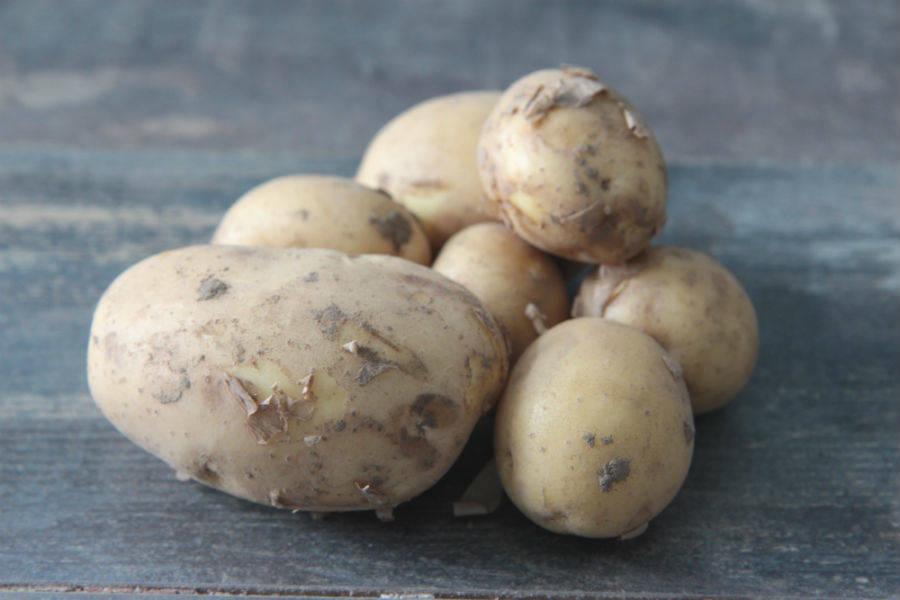 Pomme de terre Primeur Osiris - Ferme de la Villeneuve - La Ruche qui dit Oui ! à la maison