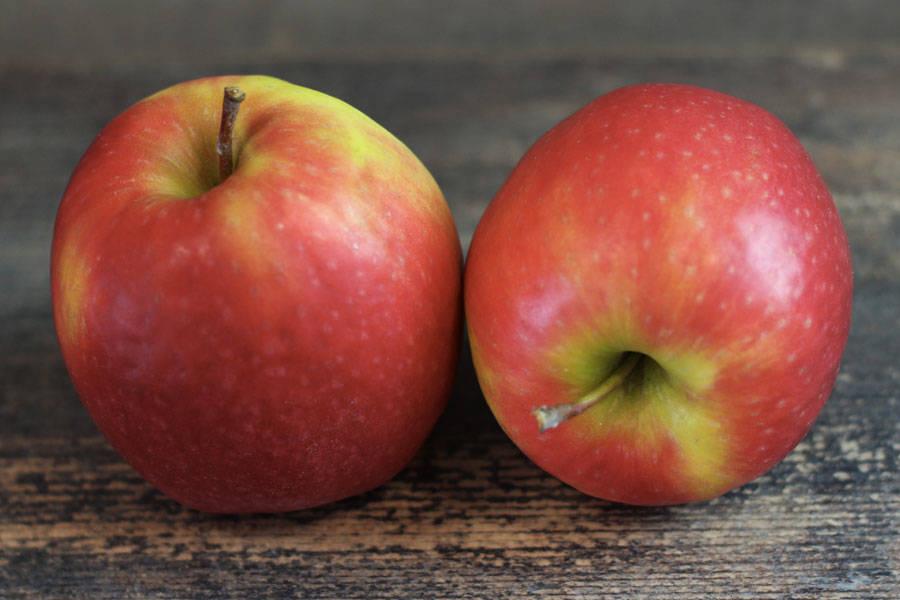 Pomme Pink - Vergers de Molien - La Ruche qui dit Oui ! à la maison