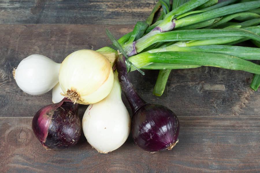 Botte d'oignons frais - Les Légumes de Planche - La Ruche qui dit Oui ! à la maison