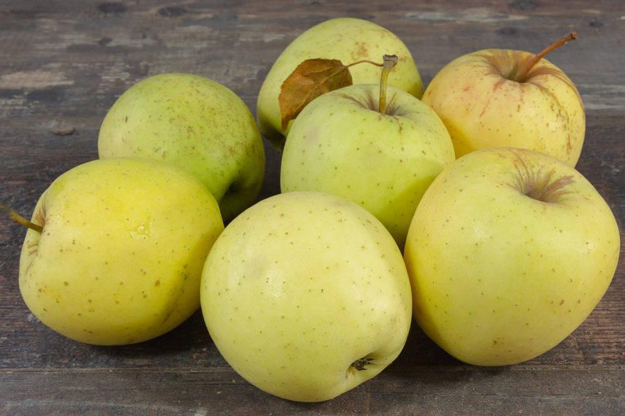 Pomme Golden Delicious BIO - La Coopérative Bio d'Île-de-France - La Ruche qui dit Oui ! à la maison