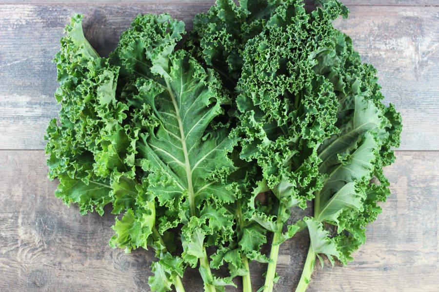 Kale vert - Annie, Francis et Julie Tremblay - La Ruche qui dit Oui ! à la maison