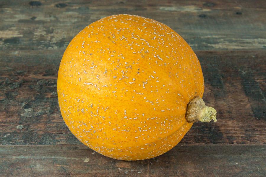 Courge melonnette Jaspée de Vendée BIO - Les Légumes de Laura - La Ruche qui dit Oui ! à la maison