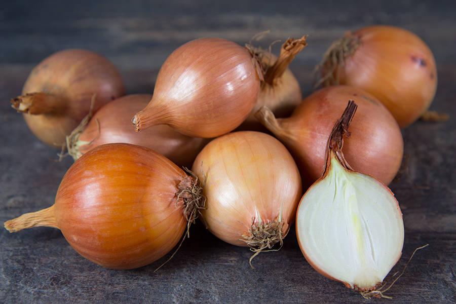 Oignons jaunes (en conversion BIO) - Cueillette Varet - La Ruche qui dit Oui ! à la maison
