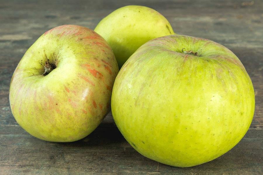 Pomme Lanscaillier BIO - Le Père Denis - La Ruche qui dit Oui ! à la maison