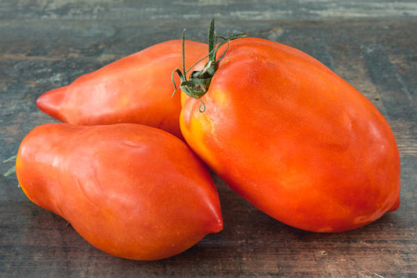 Tomate ancienne andine cornue - Les Saveurs de Chailly