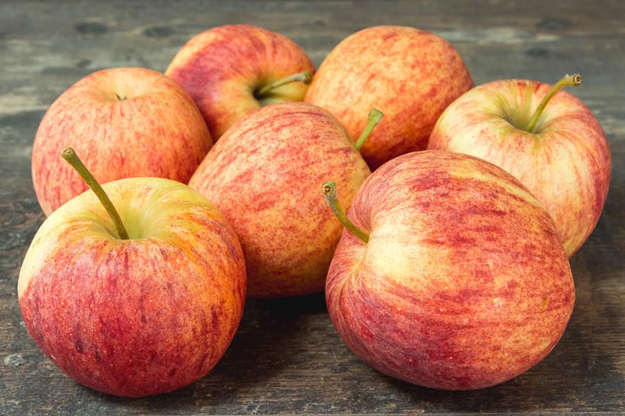 Pomme Royal Gala - Vergers de Pomamour - La Ruche qui dit Oui ! à la maison