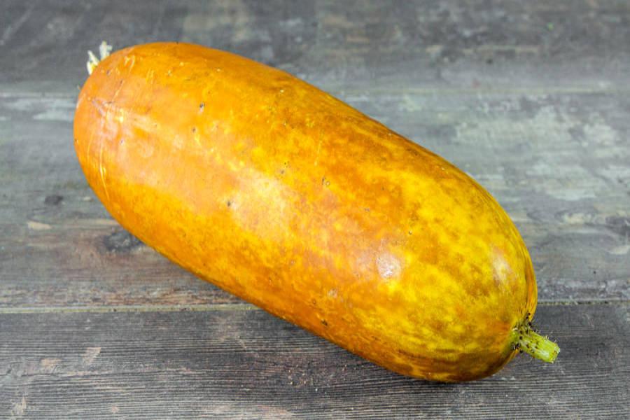 Concombre Poona Kheera BIO - Le Clos de Nonville - La Ruche qui dit Oui ! à la maison