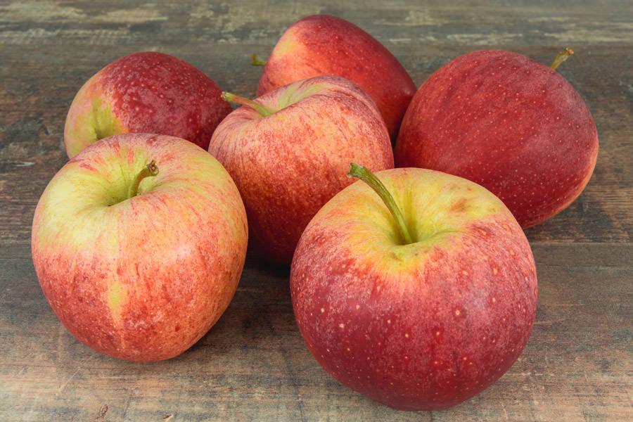 Pomme Royal Gala BIO - EARL du Châtaignier - La Ruche qui dit Oui ! à la maison