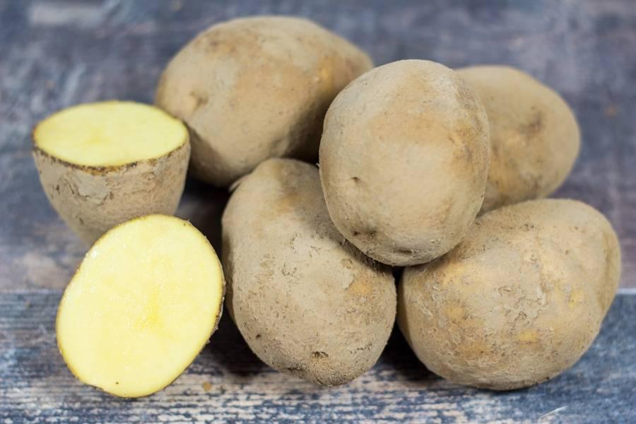 Pomme de terre à frites - Ferme de la Villeneuve - La Ruche qui dit Oui ! à la maison