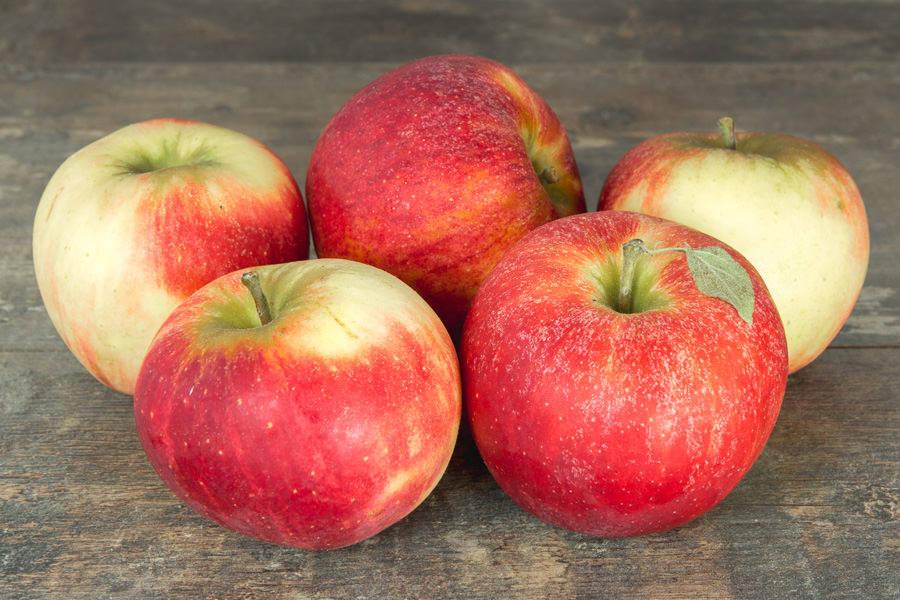Pommes Cybèle - Cueillette de Nolongue - La Ruche qui dit Oui ! à la maison