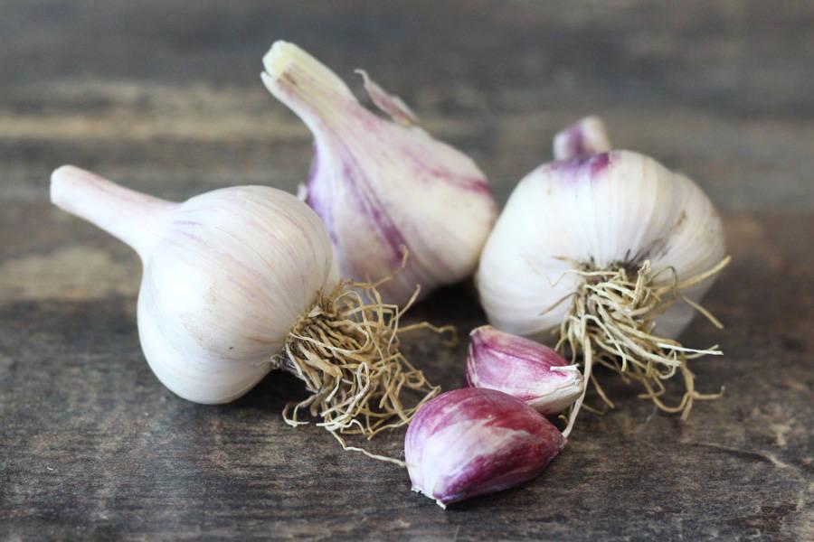 Ail nouveau BIO - Les Légumes de Planche - La Ruche qui dit Oui ! à la maison