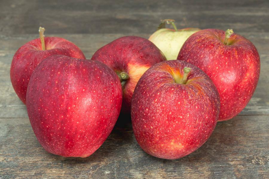 Pommes Royal Gala - Cueillette de Nolongue - La Ruche qui dit Oui ! à la maison