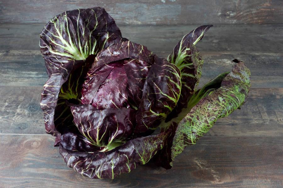 Chicorée Scarole BIO - Les jardins de Courances - La Ruche qui dit Oui ! à la maison