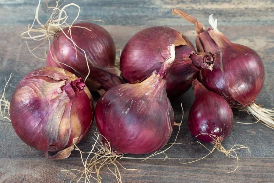 Oignons rouges BIO - Les jardins de Courances - La Ruche qui dit Oui ! à la maison