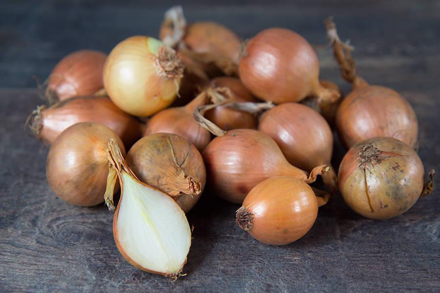 Oignons grelots (en conversion BIO) - Cueillette Varet - La Ruche qui dit Oui ! à la maison