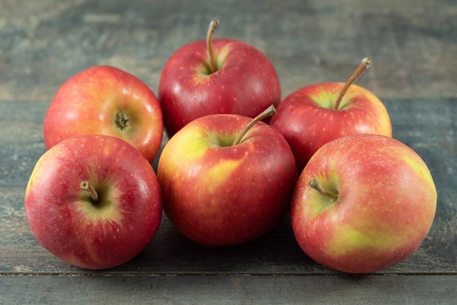 Pomme Pirouette - Cueillette de Nolongues - La Ruche qui dit Oui ! à la maison