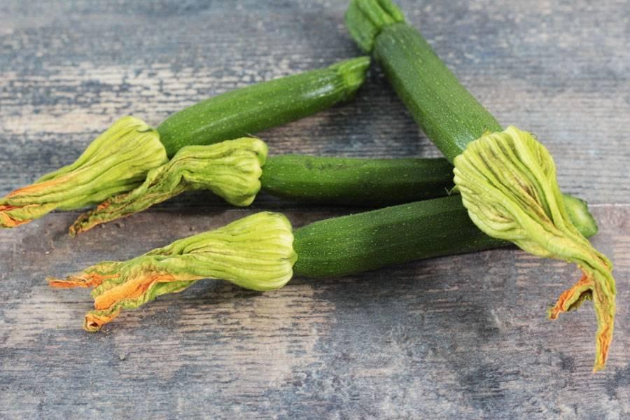 Fleurs de courgettes - Le Potager d'Olivier - La Ruche qui dit Oui ! à la maison
