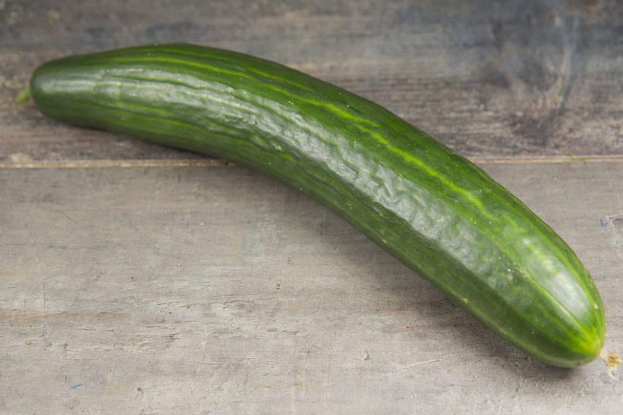 Concombre long BIO - Les jardins d'Héricourt - La Ruche qui dit Oui ! à la maison