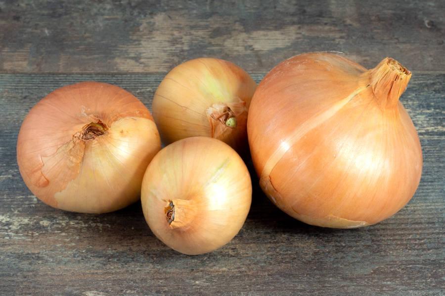 Oignon jaunes BIO - Les Légumes de Planche - La Ruche qui dit Oui ! à la maison
