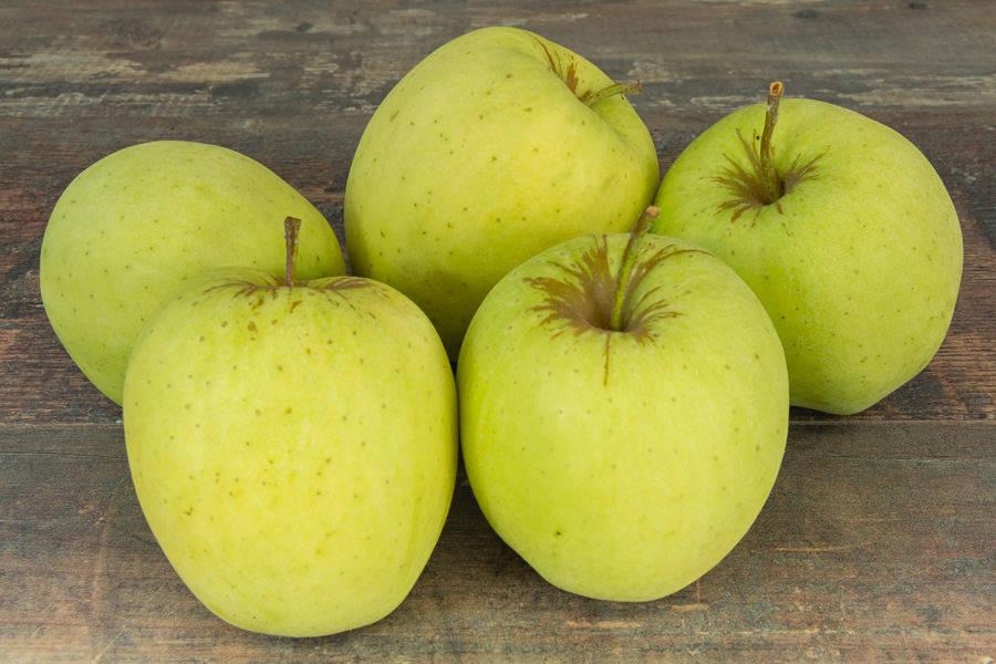 Pomme Golden - Vergers de Molien - La Ruche qui dit Oui ! à la maison