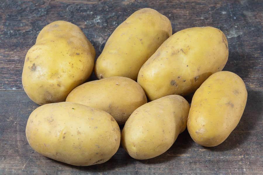 Pomme de terre Charlotte BIO - Ferme Lafouasse - La Ruche qui dit Oui ! à la maison
